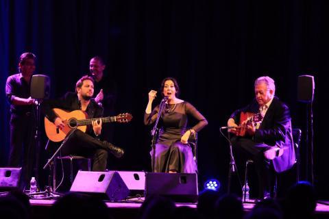 Laura Vital en su concierto 'Tejiendo Lunas' (foto: Nicolás García)