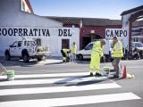 Las últimas señales horizontales y verticales se han instalado ya en la avenida de la Constitución. (Foto: Nicolás G. Becerra)
